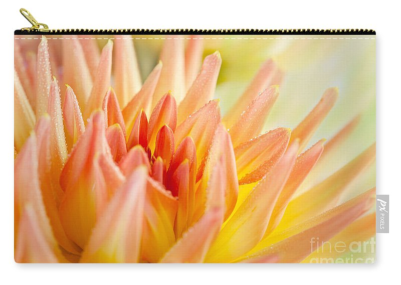 Dahlia Carry-all Pouch featuring the photograph Dahlia by Nailia Schwarz