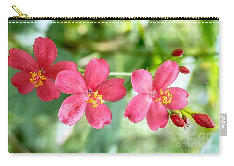 Flower Carry-all Pouch featuring the photograph For You by Mioara Andritoiu