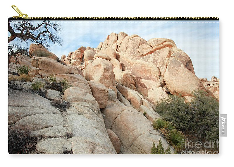 Joshua Tree Carry-all Pouch featuring the photograph Joshua Tree National Park, California by Gal Eitan