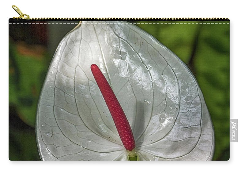 Florida Carry-all Pouch featuring the photograph 5129- Flower by David Lange