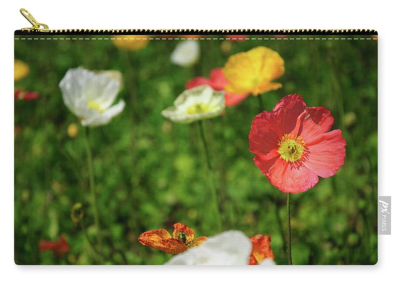 Corn Poppy Flowers Carry All Pouch For Sale By Carl Ning