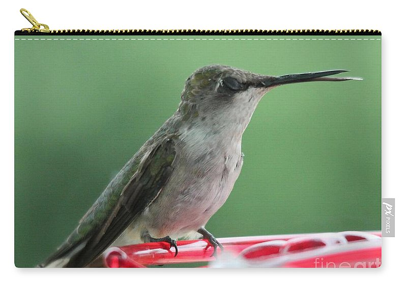 Mccombie Carry-all Pouch featuring the photograph Female Ruby-throated Hummingbird by J McCombie