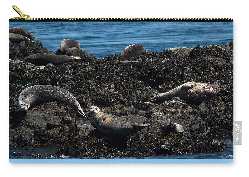 Swan Carry-all Pouch featuring the photograph Clear Day Barn by Linda Kerkau
