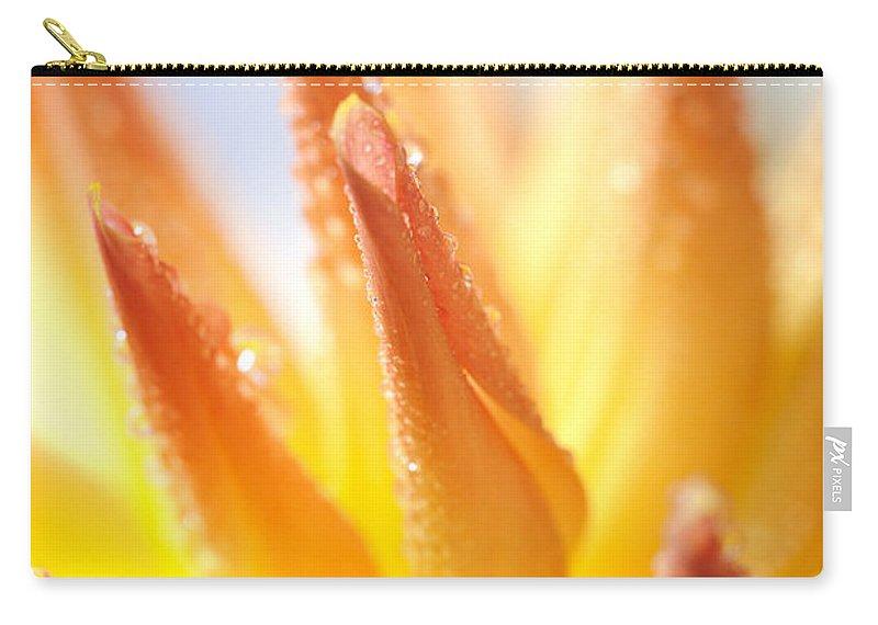 Dahlia Carry-all Pouch featuring the photograph Dahlia by Nailia Schwarz