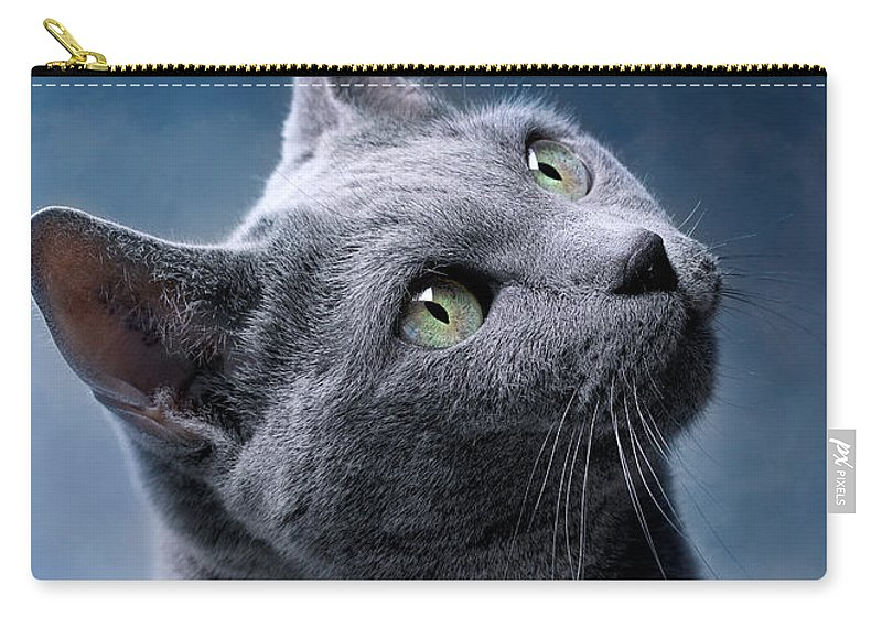 Russian Carry-all Pouch featuring the photograph Russian Blue Cat by Nailia Schwarz