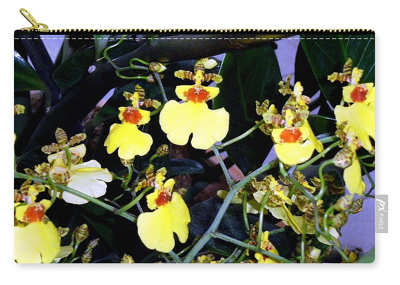 Orchids Carry-all Pouch featuring the photograph A Ballet Of Tiny Orchids by Mindy Newman