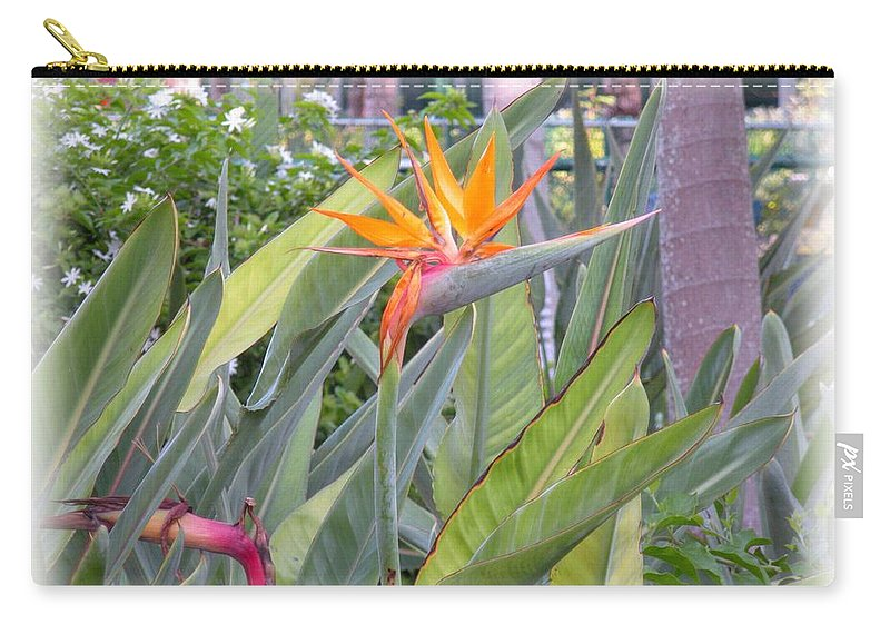 Plant Carry-all Pouch featuring the photograph A Bird In Paradise by Maria Bonnier-Perez