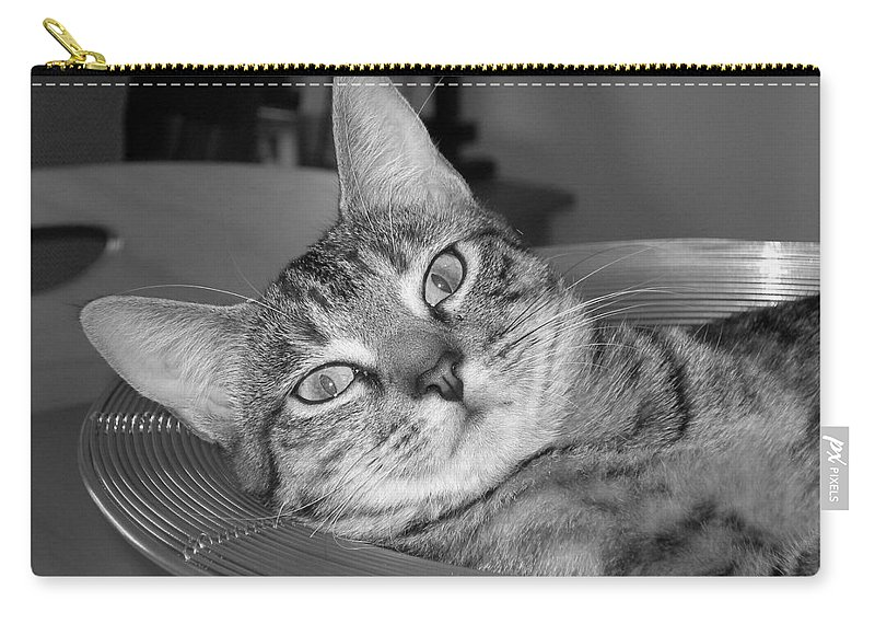 Cat Carry-all Pouch featuring the photograph A Bowl Of Ginger by Maria Bonnier-Perez