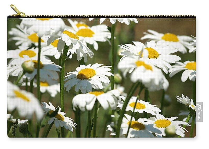 Flowers Carry-all Pouch featuring the photograph A Daisy A Day by DeeLon Merritt