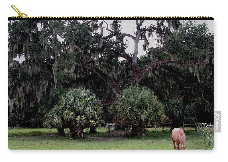 Horse Carry-all Pouch featuring the photograph A Day At Chimney Field 2 by J M Farris Photography