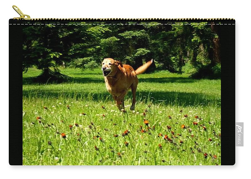 Dog Running Carry-all Pouch featuring the pyrography A Dogs Freedom by Amber Carpenter