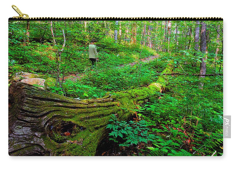 Hiking Carry-all Pouch featuring the painting A Forest Stroll by David Lee Thompson