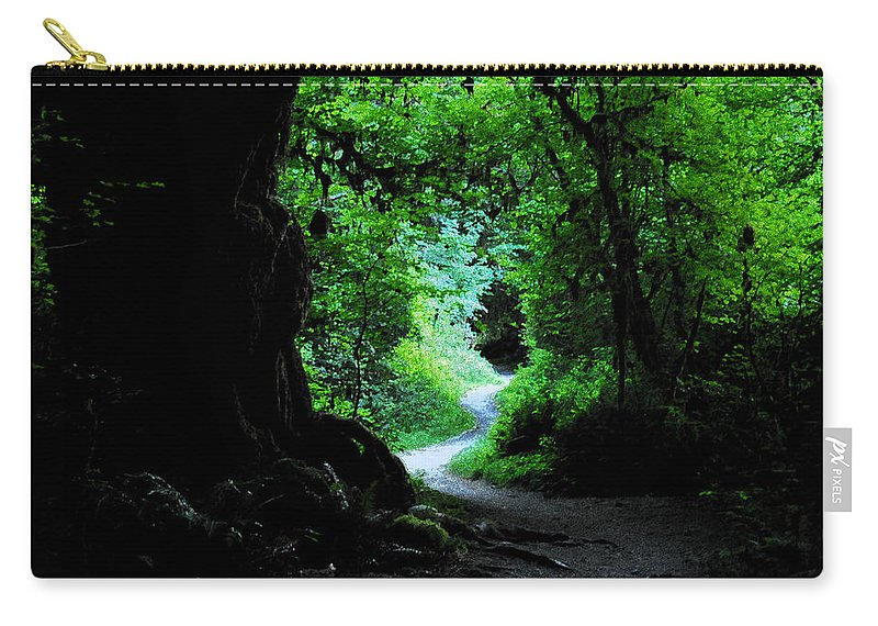 Art Carry-all Pouch featuring the painting A Forest Trail by David Lee Thompson
