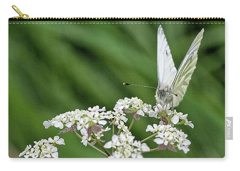 Insectsofinstagram Carry-all Pouch featuring the photograph A Green-veined White (pieris Napi) by John Edwards