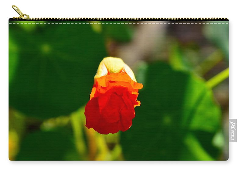Orange Carry-all Pouch featuring the photograph A Hint 2 by Viktoriya Sorochuk