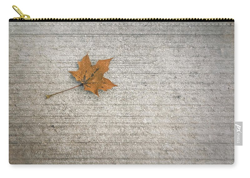 Leaf Carry-all Pouch featuring the photograph A Hint Of Autumn by Scott Norris