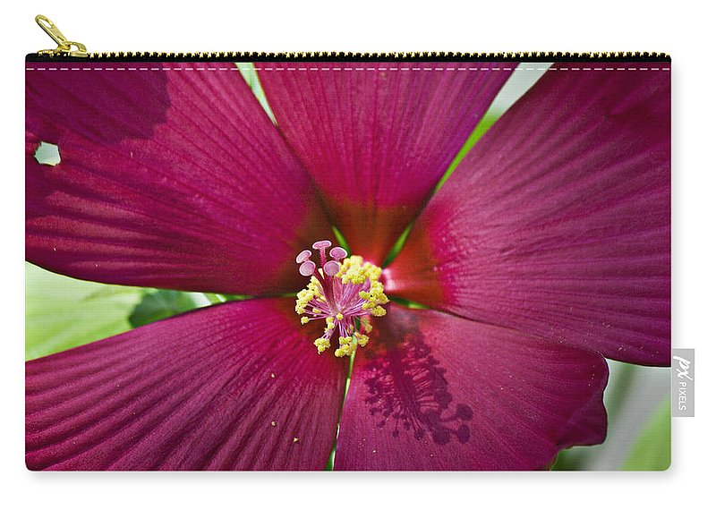 Hibiscus Carry-all Pouch featuring the photograph A Hole In One by Teresa Mucha