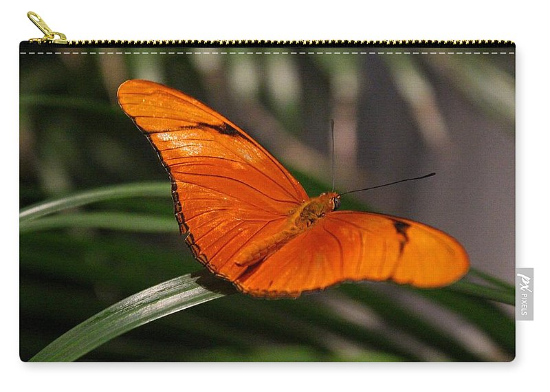 Julia Carry-all Pouch featuring the photograph A Julia Butterfly I by Michiale Schneider