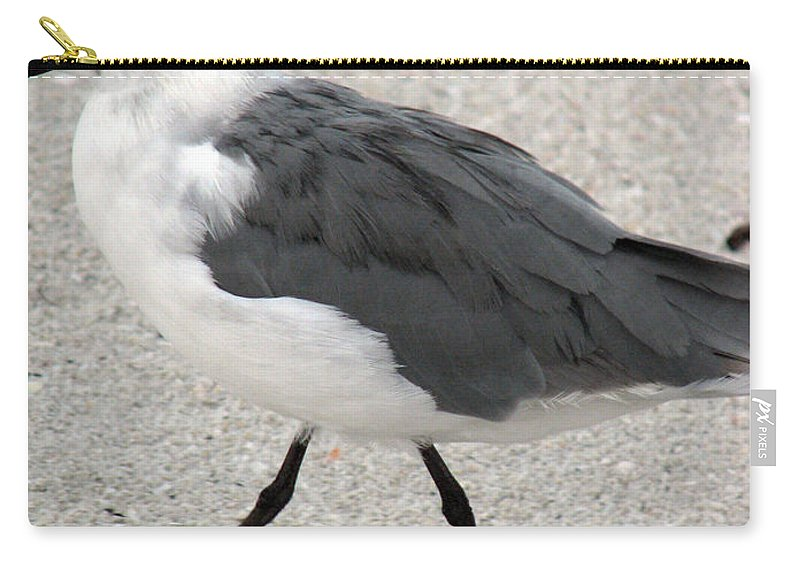 Seagulls Carry-all Pouch featuring the photograph A Late Summer Walk by Amanda Barcon
