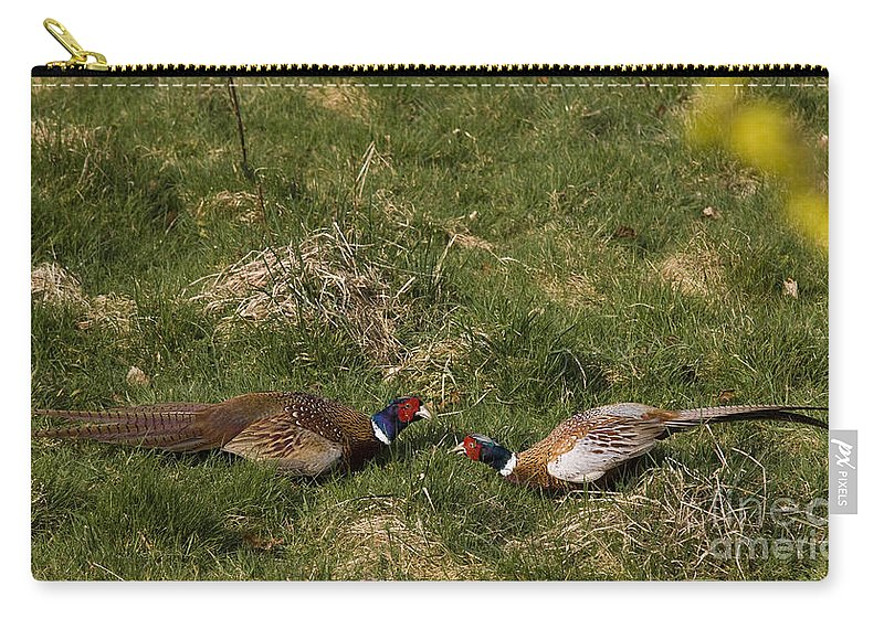 Pheasant Carry-all Pouch featuring the photograph A Little Argue by Angel Tarantella