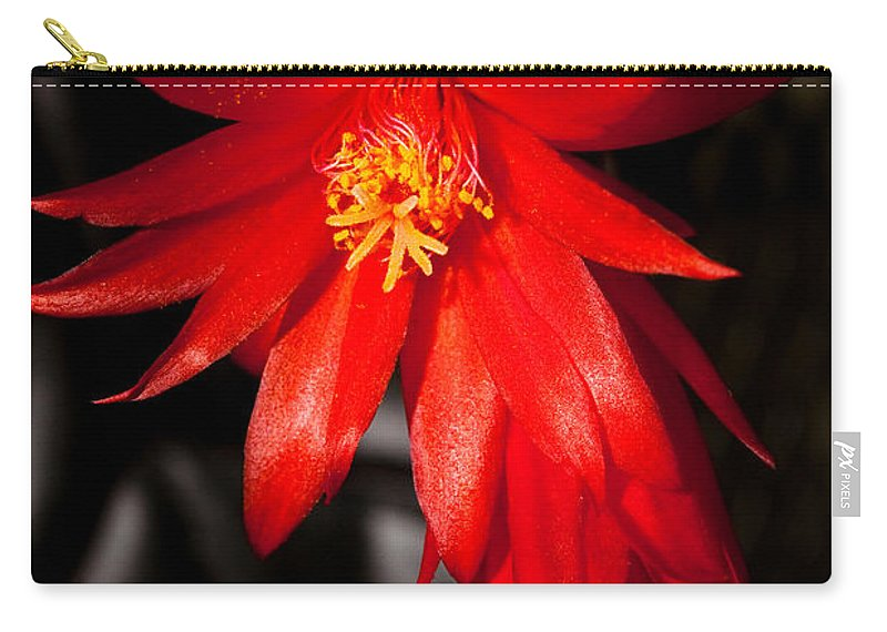 Bloom Carry-all Pouch featuring the photograph A Little Fire by Christopher Holmes