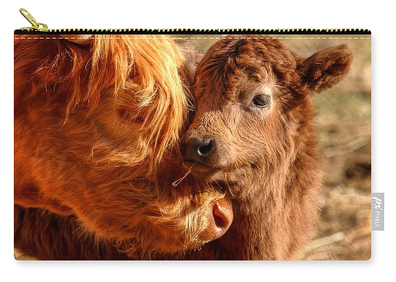 Cattle Carry-all Pouch featuring the photograph A Mother's Love 0088 by Kristina Rinell
