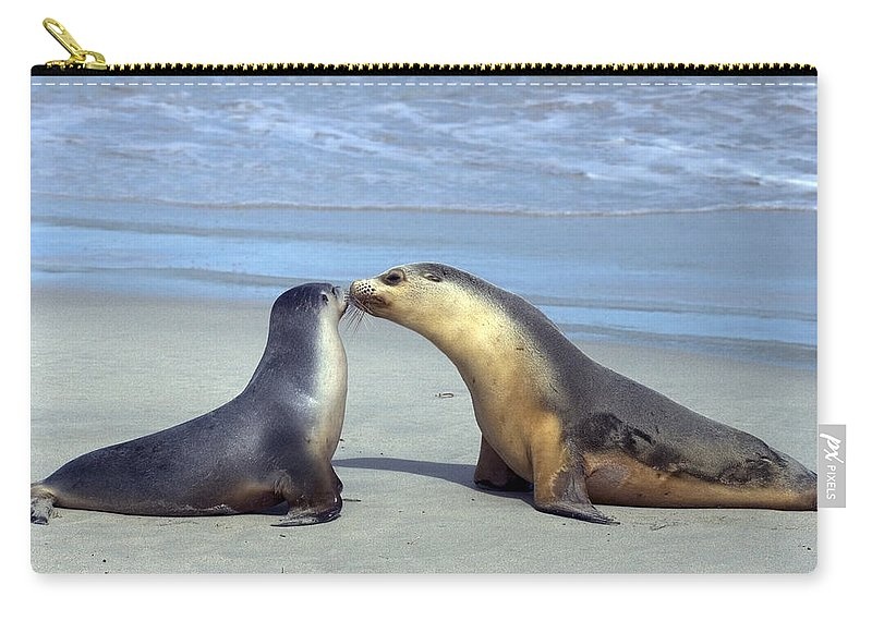 Sea Lion Carry-all Pouch featuring the photograph A Mothers Love by Mike Dawson