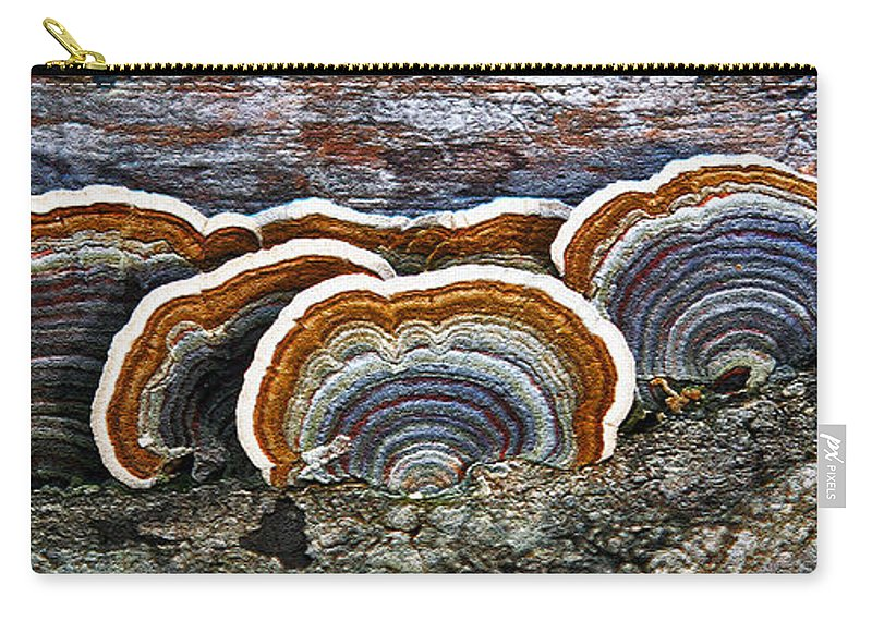 Nature Carry-all Pouch featuring the mixed media A Natural Landscape by Claudia O'Brien