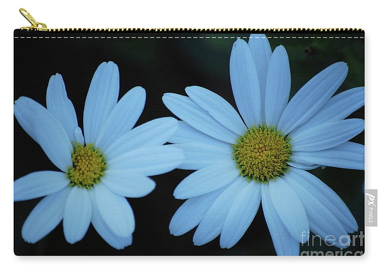Daisy Carry-all Pouch featuring the photograph A Pair Of Daisies by Lori Tambakis