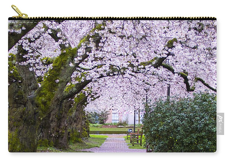 Pink Carry-all Pouch featuring the photograph A Pink Pathway by Matt McDonald