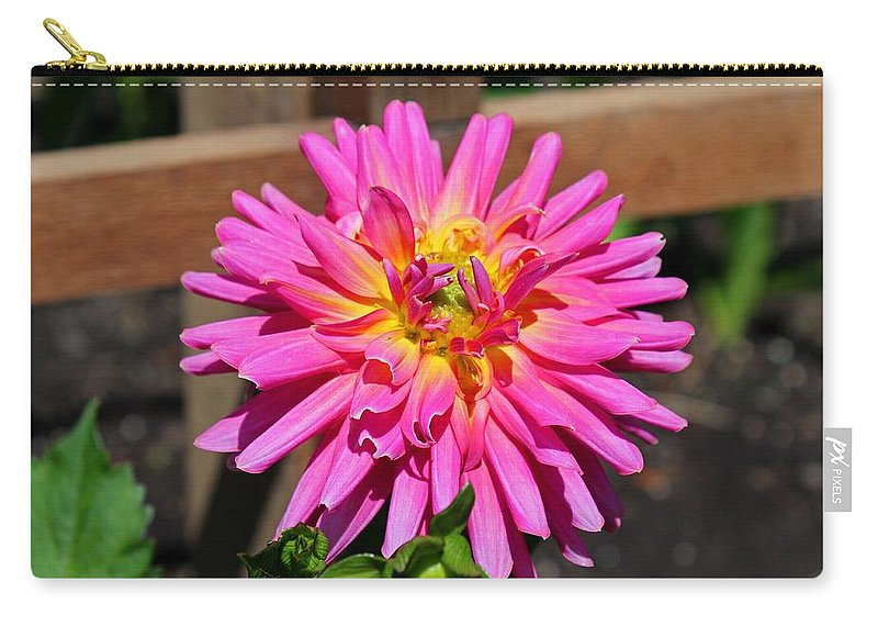 Dahlia Carry-all Pouch featuring the photograph A Poignant Love Story by Michiale Schneider