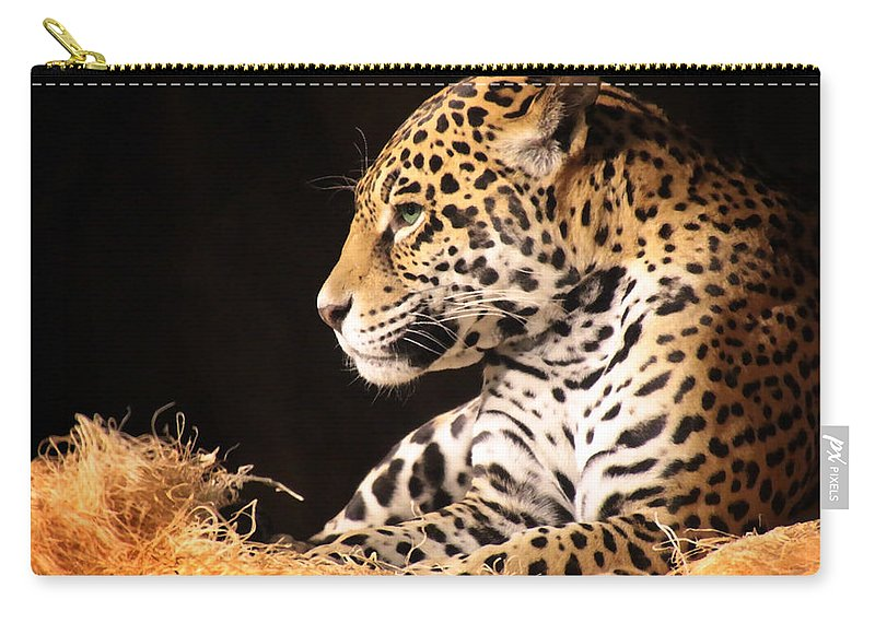 Wildlife Carry-all Pouch featuring the photograph A Portrait by Debbie Nobile