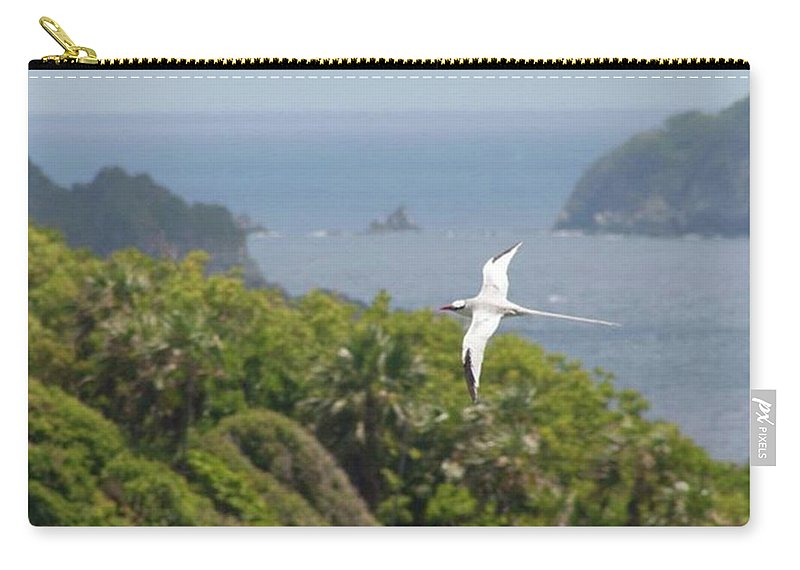Tropicbird Carry-all Pouch featuring the photograph A Red-billed Tropicbird (phaethon by John Edwards