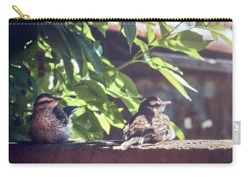 Beak Carry-all Pouch featuring the photograph A Rest Before The Flight by Eduardo Jose Accorinti