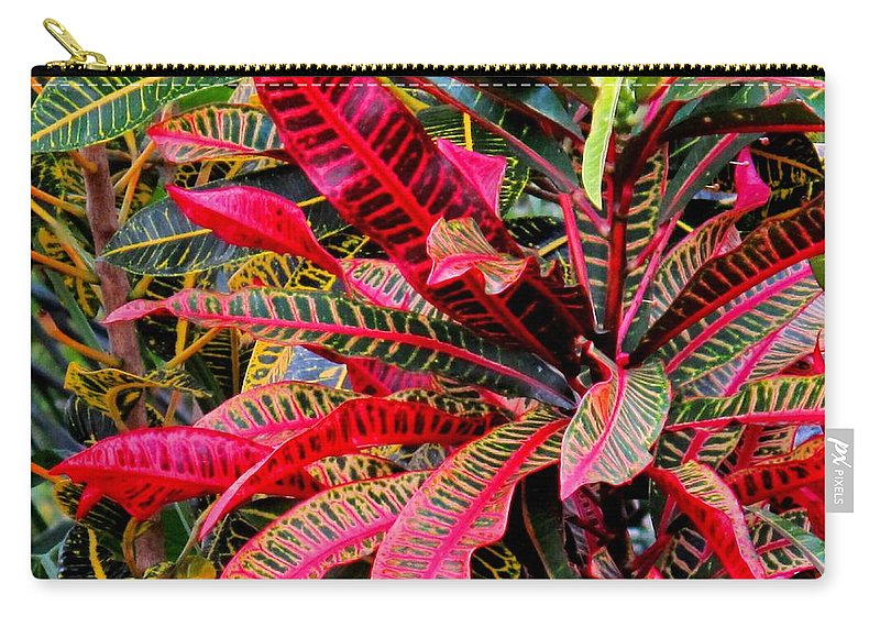 Red Carry-all Pouch featuring the photograph A Rich Composition by Ian MacDonald