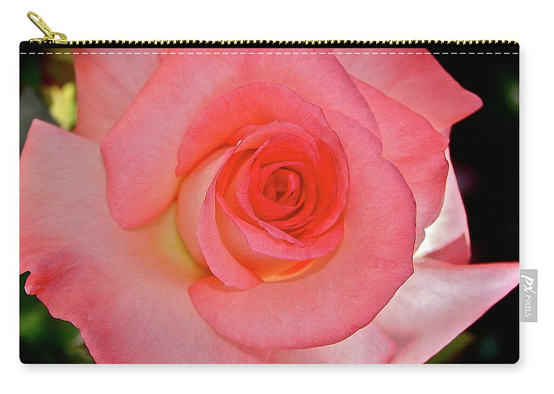 Rose Carry-all Pouch featuring the photograph A Rose For Mary by Diana Hatcher