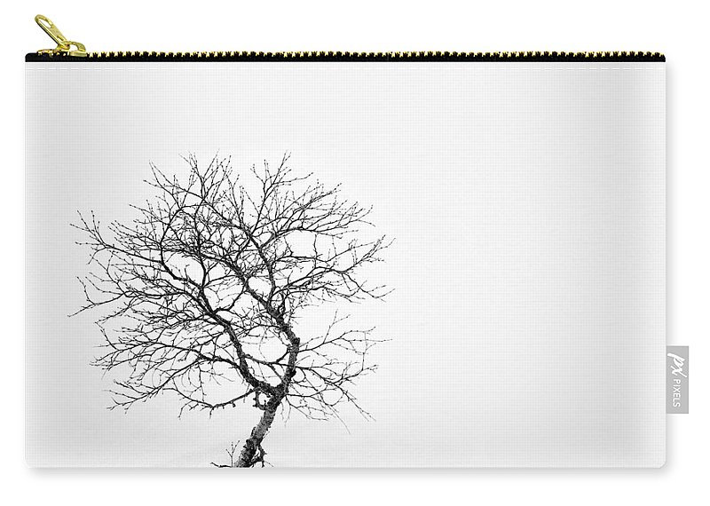 One Tree Carry-all Pouch featuring the photograph A Simple Tree by Dave Bowman