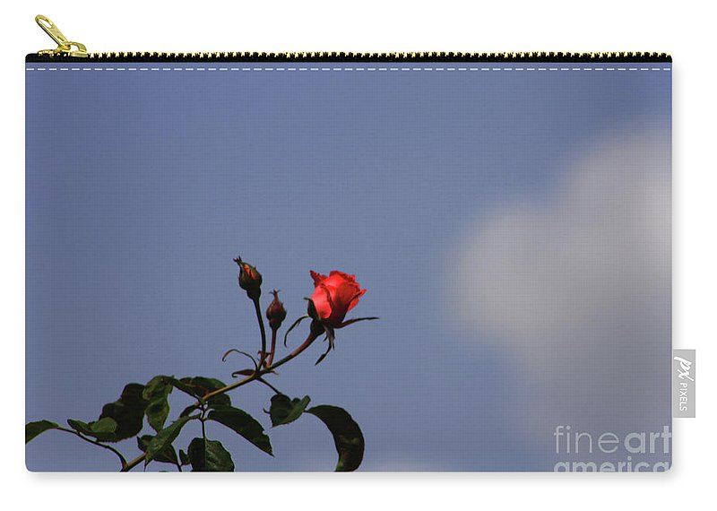 Rose Carry-all Pouch featuring the photograph A Single Rose by Tommy Anderson