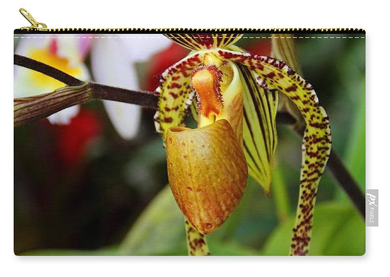 Orchid Carry-all Pouch featuring the photograph A Slipper In The Shadows by Michiale Schneider