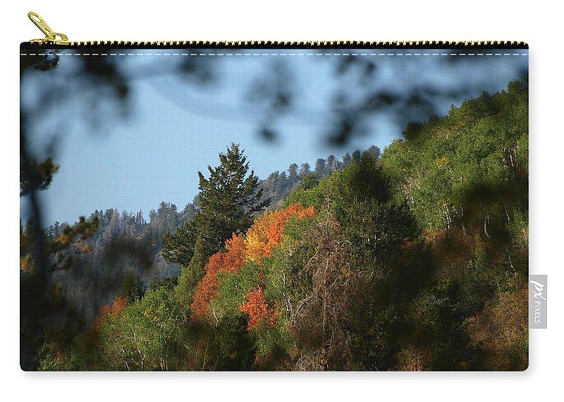Fall Carry-all Pouch featuring the photograph A Spot Of Fall by DeeLon Merritt