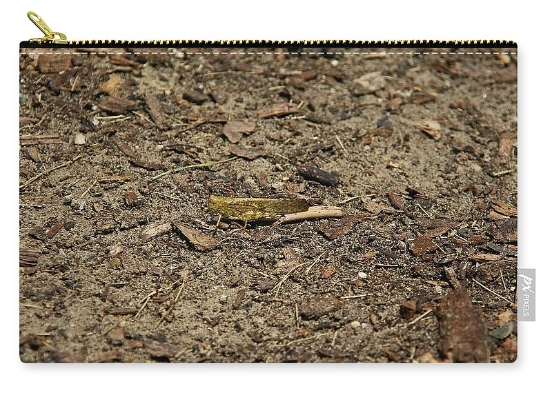 Locust Carry-all Pouch featuring the photograph A Stranger In The Kingdom by Michiale Schneider