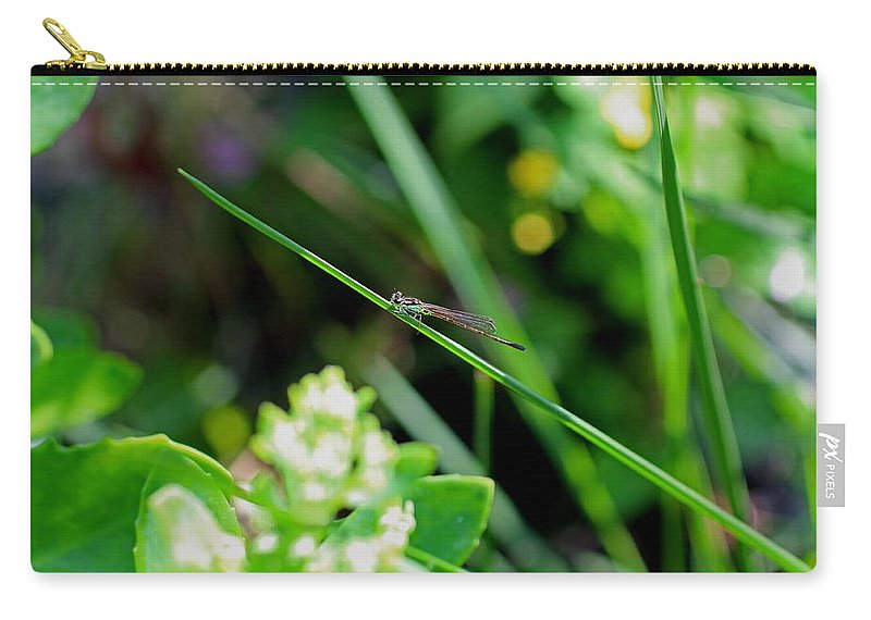 Dragonfly Carry-all Pouch featuring the photograph A Summer Of Dragonfly Kisses by Michiale Schneider