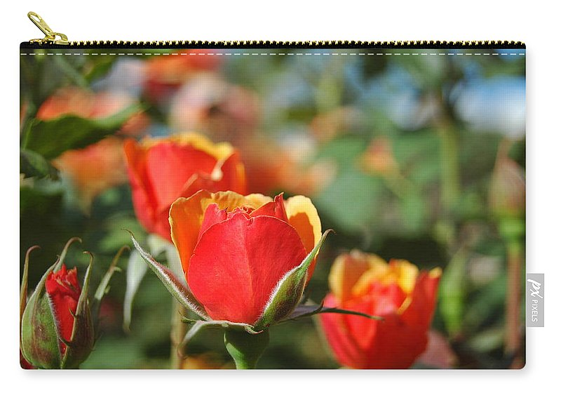 Red Carry-all Pouch featuring the photograph A Surprise Inside by Teresa Stallings