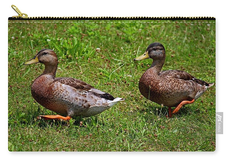 Duck Carry-all Pouch featuring the photograph A Sweeping Romance by Michiale Schneider