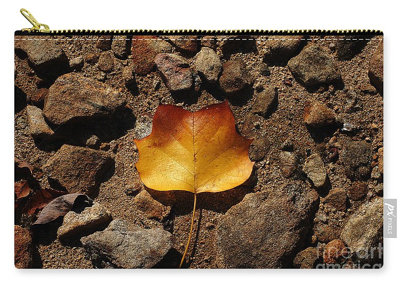 Leaf Carry-all Pouch featuring the photograph A Touch Of Autumn by Lori Tambakis