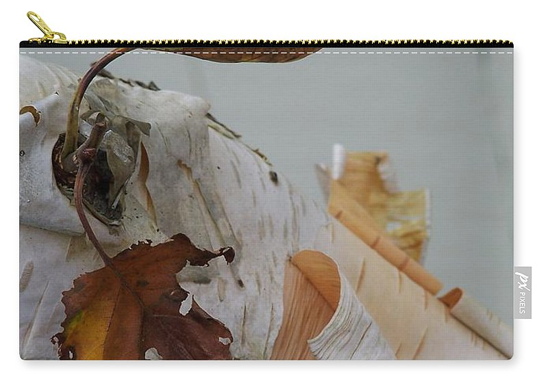 Birch Carry-all Pouch featuring the photograph A Touch Of Fall by Gale Cochran-Smith