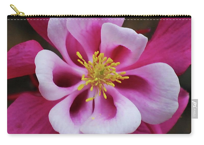 Columbine Carry-all Pouch featuring the photograph A Touch Of Yellow by Lori Tambakis