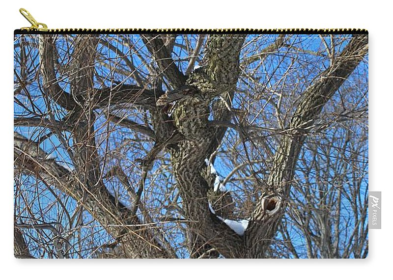 Tree Carry-all Pouch featuring the photograph A Tree In Winter- Vertical by Michiale Schneider