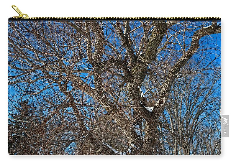 Tree Carry-all Pouch featuring the photograph A Tree In Winter- Horizontal by Michiale Schneider