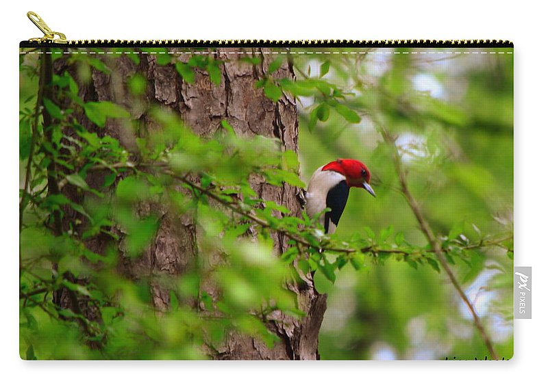 Red Headed Woodpeckers Carry-all Pouch featuring the photograph A True Red Head by Lisa Wooten